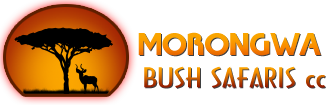MORONGWA BUSH SAFARIS CC